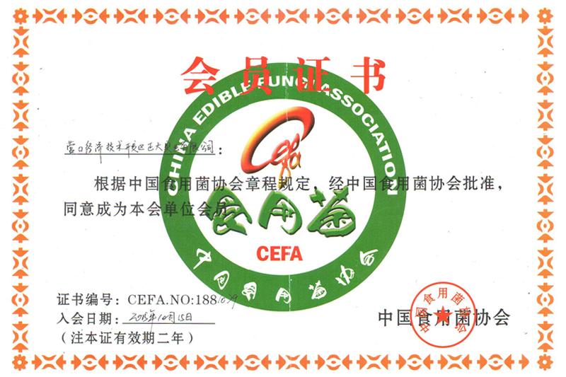中国食用菌协会